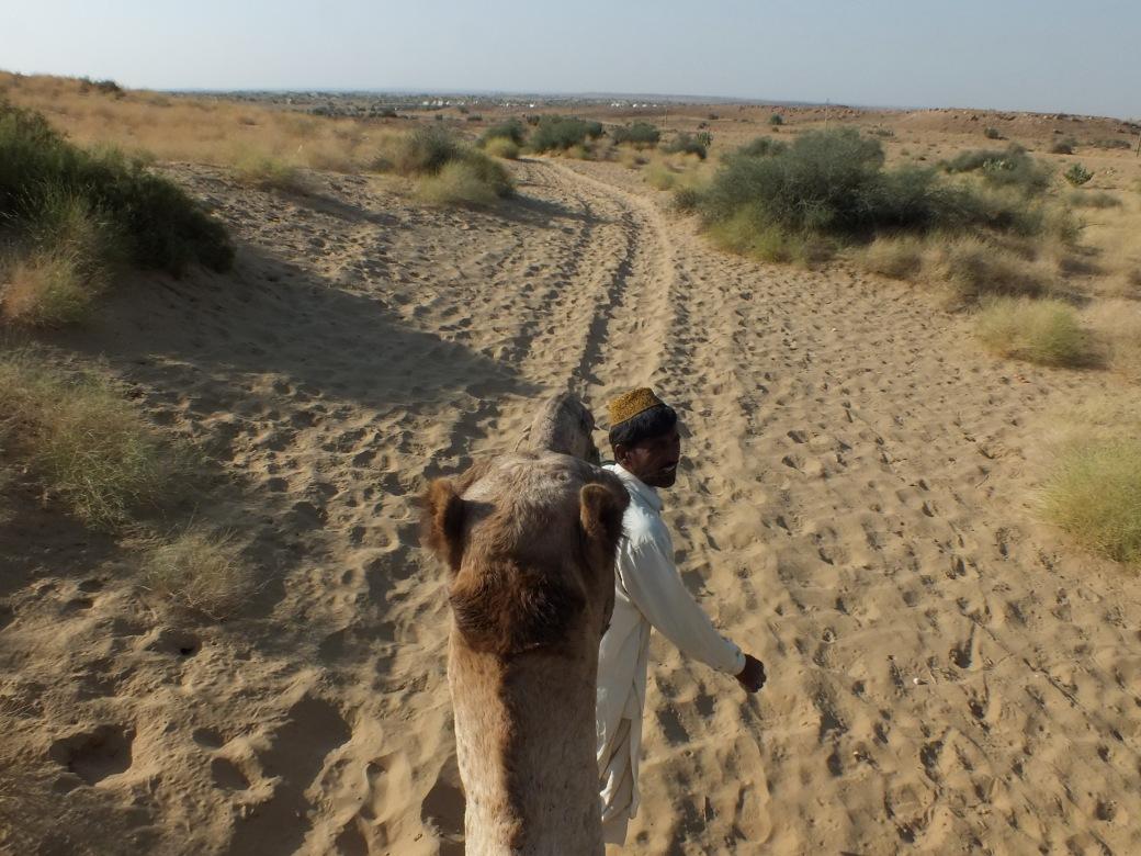 CamelMike.JPG