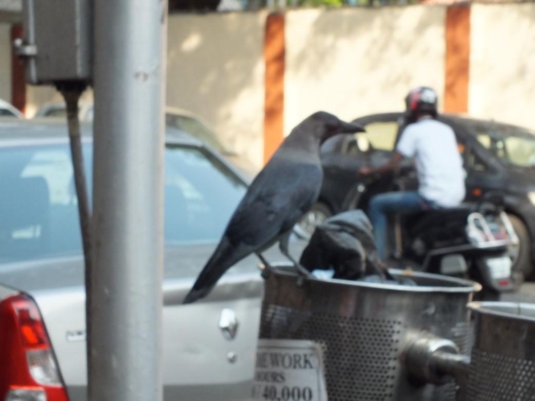 Mumbai10.JPG